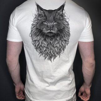 Katt herre